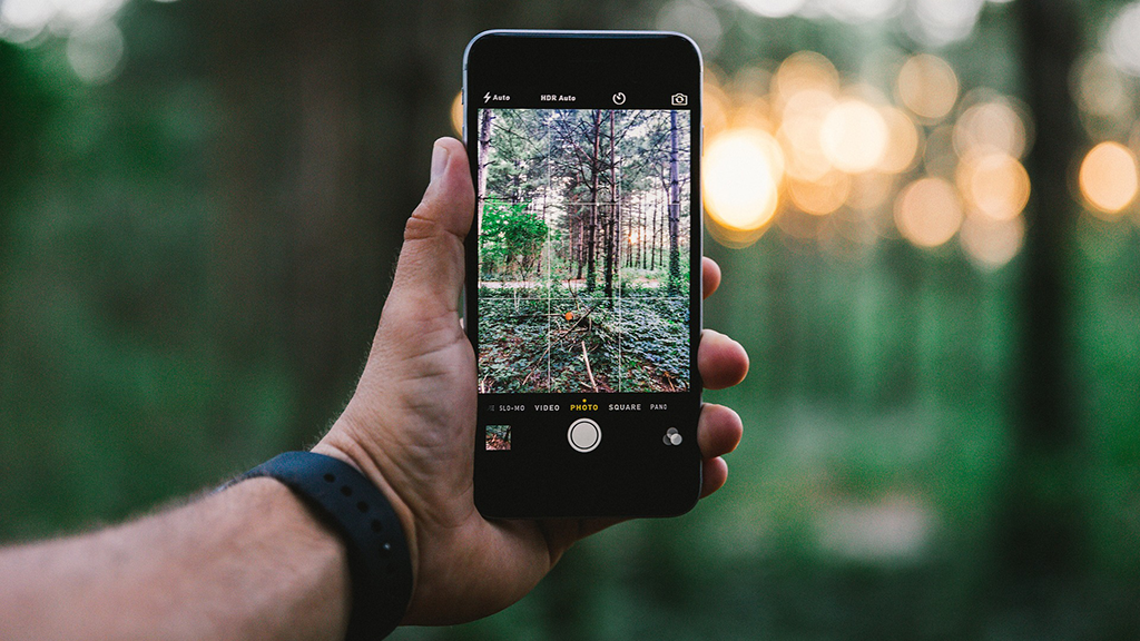 Hand holding cell phone in front of a backdrop of trees.